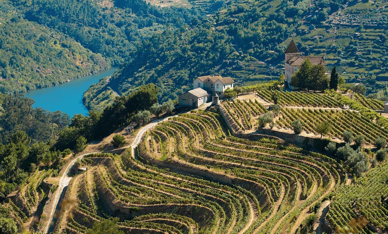 Região em Vale do Douro